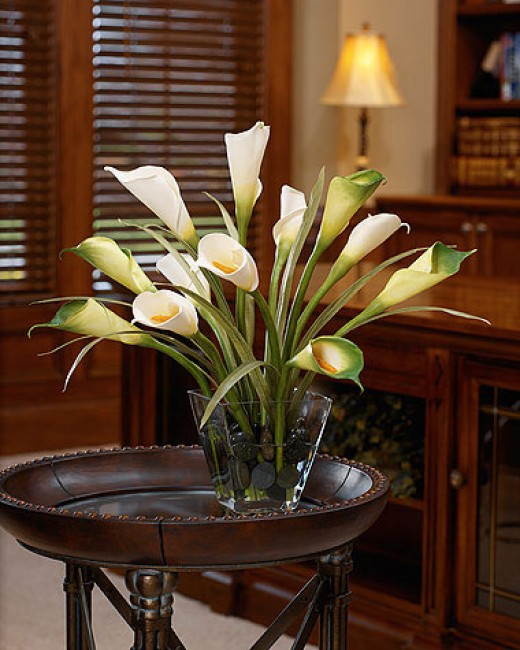 Silk plants make the perfect gift