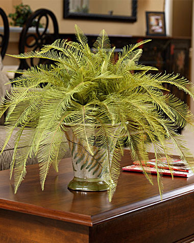 Silk plants are beautiful, unique gifts. Who would turn down this gorgeous needle fern?