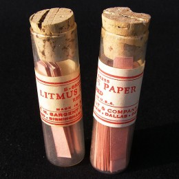 You can make your own Litmus Paper