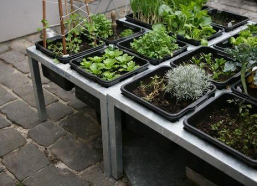 Container farming is highly adaptable to many circumstances. It is ideal for rooftop gardening on existing rooftops.