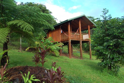 Coral Sea Views Bed and Breakfast
