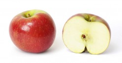 What are the Benefits of Apple