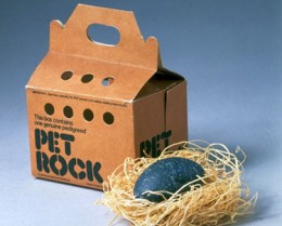 This box contains one genuine pedigreed pet rock