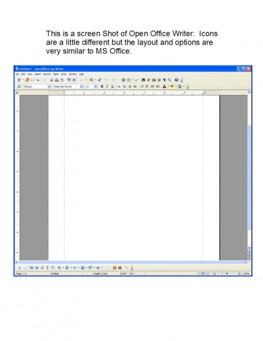 Open Office Writer Screen Shot