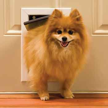 PetSafe Aluminum Freedom Pet Door $99.97