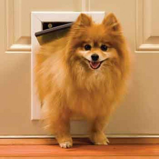 PetSafe Aluminum Freedom Pet Door $99.97