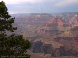 Grand Canyon State