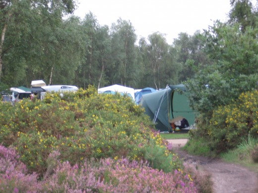 View of the tents
