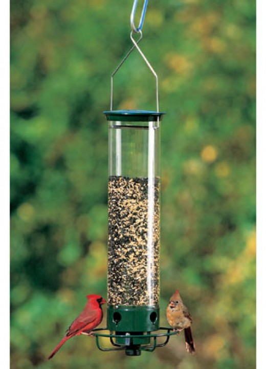 Squirrel proof bird feeder.
