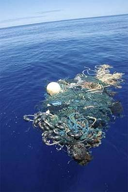 Here is a small piece of deep Pacific floating garbage flotsam. There are huge seas of plastic floating in several areas of the Pacific Ocean. Some even manages to reach Antarctica, which in itself has garbage left over from explorations.