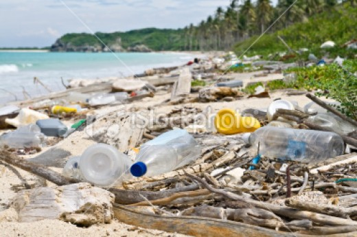 "Some garbage gets deliberately dumped by the edge of the ocean in regions ""out of view"" from the authorities."