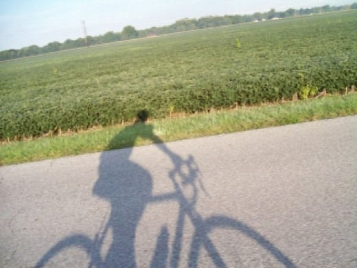 Buy Kokomo Indiana Online - Roads for biking.