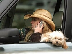 Pet Safety - Having A Dog On Your Lap While Driving, Is About To Become Against The Law!