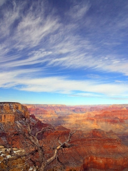 Buy Arizona Online - The Grand Canyon