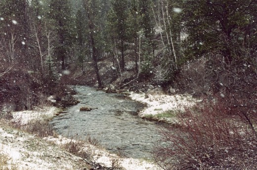 IT WAS SNOWING BESIDE SPEARFISH CREEK