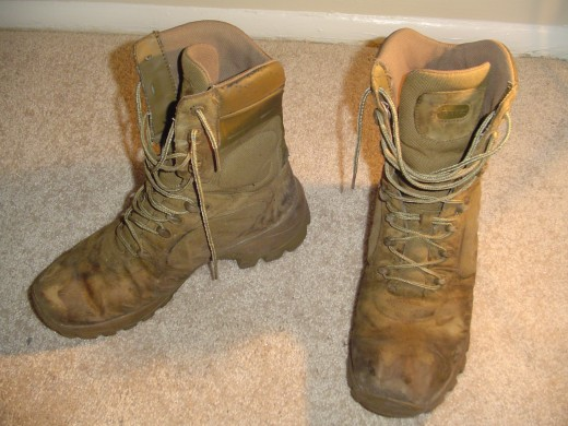 These are not military shoes! This is a pair of Bates M9 Desert Assault boots!