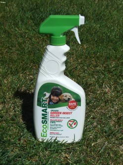 Product Review: EcoSmart Garden Insect Killer