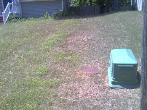 If you don't think weed b gone works my neighbor's yard is to the left of the green box!