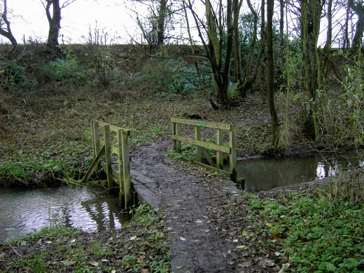Bridge over a stream in winter.Photograph by D.A.L.
