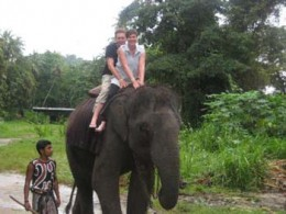 Elephant back rides are very popular among tourists