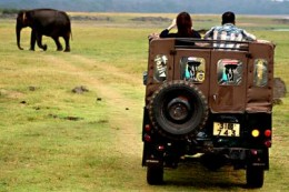 Wild Life safaris are another popular attraction among tourists