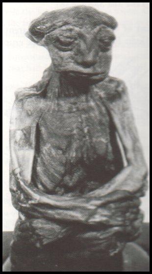 Casper Wyoming Mummy