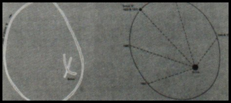 Sirius Star System Diagram