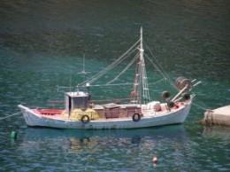 Greeks eat lots of fresh fish in their Mediterranean diet.