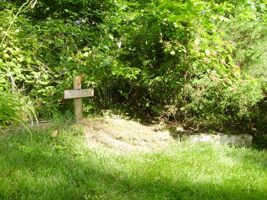 Dad planted sod over her grave the following spring-it's now beautiful and green, and is surrounded by wild berry bushes...
