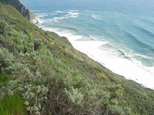 Big Sur / Photo by E. A Wright