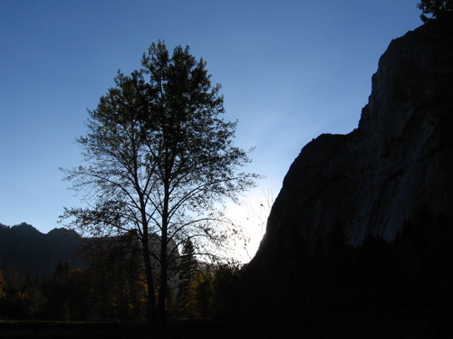 Yosemite National Park / Photo by E. A. Wright