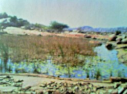 small  lake that quenched the thirst of stonage people