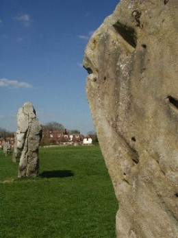 Avebury stones. Photo by T Young