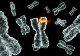 Chromosome X mutation (Google Images)