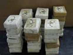 Cocaine seiure at border