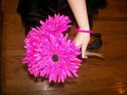 Fuchsia or hot pink Gerber daisy with black ribbon