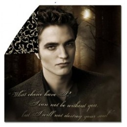 Edward Cullen Duvet Cover from the Twilight Collection