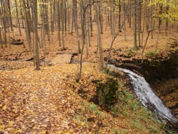 The Bruce Trail along The Niagara Escarpment as it passes Canterbury Falls.