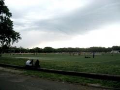 Soccer fields in Flushing Meadows Park.