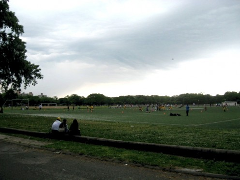 Soccer fields in Flushing Meadows Park.