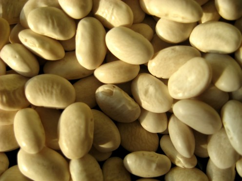 White beans / Photo by E. A. Wright