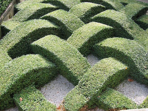 Topiary hedge, shaped as if woven.