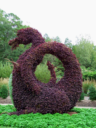 Dragon topiary, a favorite but expensive piece.