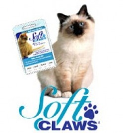Soft Claws: Nail Caps For Cats