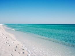 healthy sea water