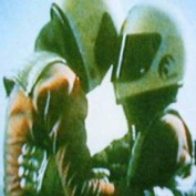liber profile image