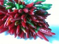 How to Dry Your Own Chillies