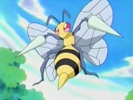 Beedrill is the final evolution of Weedle.