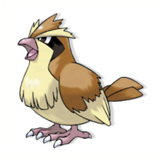 Pidgey is a tiny bird pokemon.