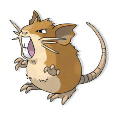 Raticate is the evolved form of Rattata.